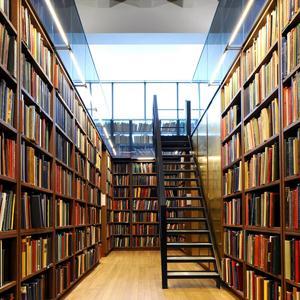 Библиотеки Малой Сердобы